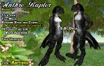 Raptor - S.B.Orca